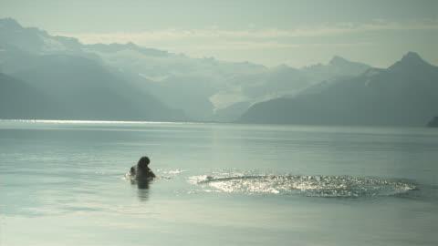 slo mo ws pan man diving into lake from rock, garibaldi provincial park, squamish, british columbia, canada - diving into water stock videos & royalty-free footage