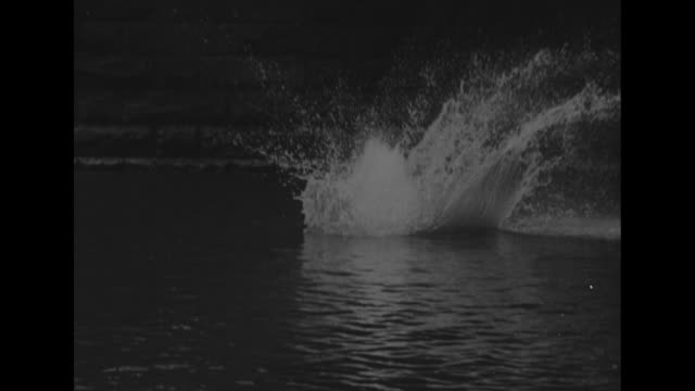 man does backward dive off bridge into water as spectators look on / two dogs, one standing on hind feet / two dogs dive together off bridge into... - reverse motion stock videos & royalty-free footage