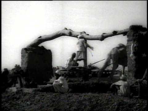 1938 montage man drives a camel forward which is used to turn irrigation wheel / egypt - black and white stock videos & royalty-free footage