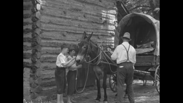 man drives mulepulled covered wagon toward camera and log building / man and two barefoot boys around age 12 adjust harness / cu mule / man and boys... - paramount building stock videos and b-roll footage