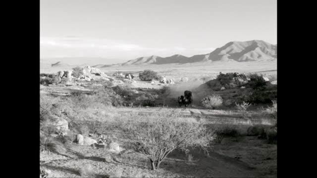 ws pan man driving horsedrawn carriage on dirt road in desert with mountain in background / united states - arbetsdjur bildbanksvideor och videomaterial från bakom kulisserna