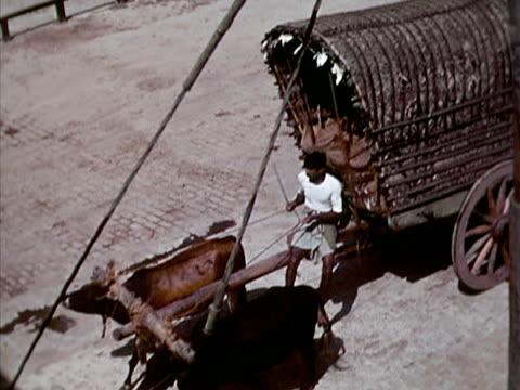 1939 ha ws man driving ox-drawn wagon/ colombo, sri lanka  - zaum stock-videos und b-roll-filmmaterial