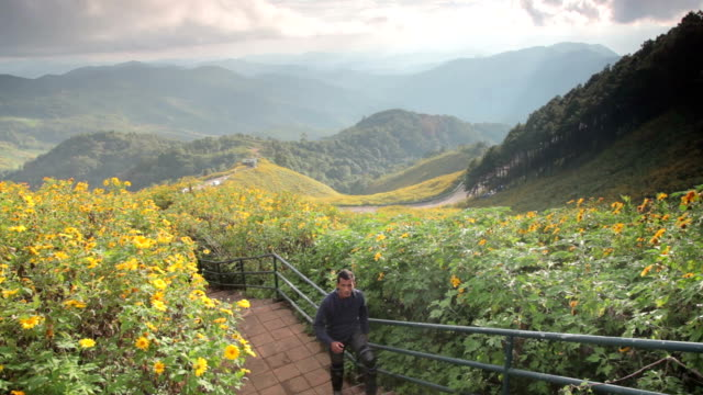 man enjoying amazing viewpoint. thinking about nature. - mae hong son province stock videos and b-roll footage