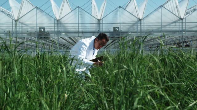 ms tu man examining flora at a greenhouse / salem, utah, usa. - clipboard stock videos & royalty-free footage