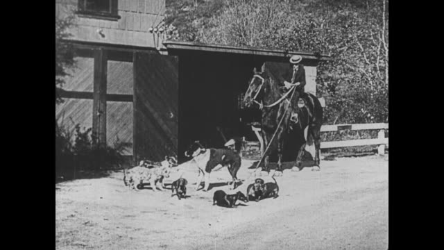 1921 man (buster keaton) fails at impressing a woman (virginia fox) on a horse when he is almost pulled off by hunting dogs - 1921年点の映像素材/bロール