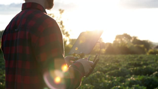 man farmer pilot using drone remote controller at sunset - piloting stock videos and b-roll footage