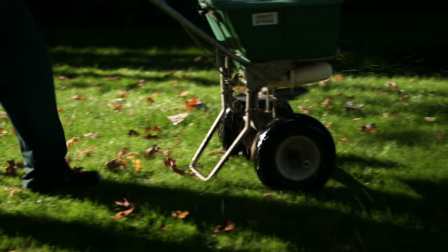 Man fertilizing backyard