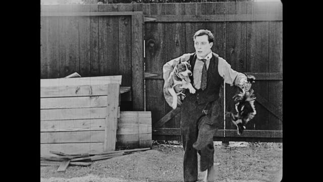 1922 man (buster keaton) finds a skunk when chasing after a dog - dog and cat stock videos and b-roll footage