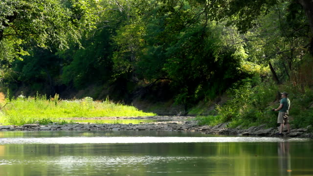 man fishing in calm stream - riverbank stock videos & royalty-free footage