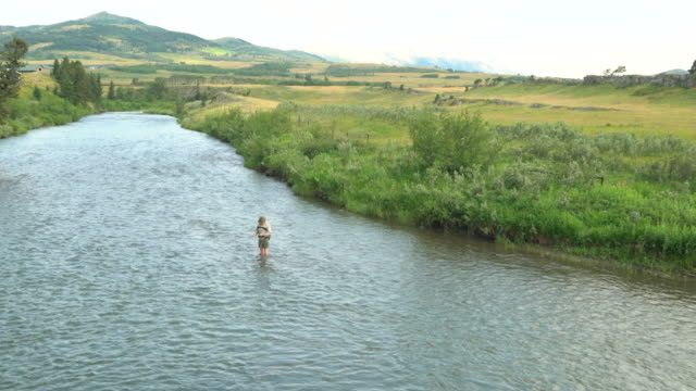 man fishing in river - only mature men stock videos & royalty-free footage
