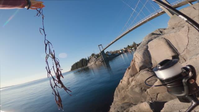 海で釣りpov男:アルギとの不運 - 釣りをする点の映像素材/bロール