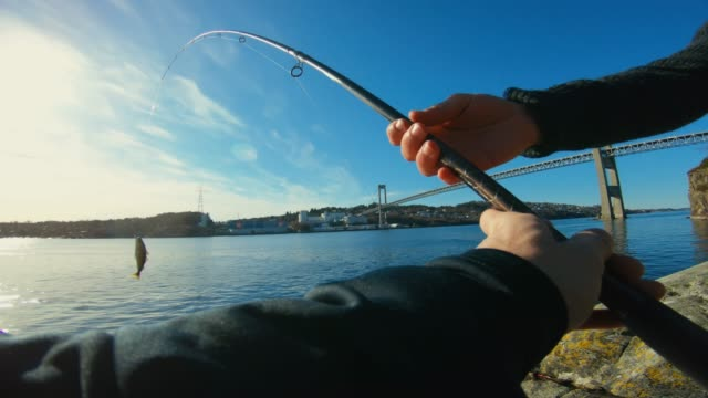 pov man fishing in the sea: catching a fish - fishing rod stock videos & royalty-free footage