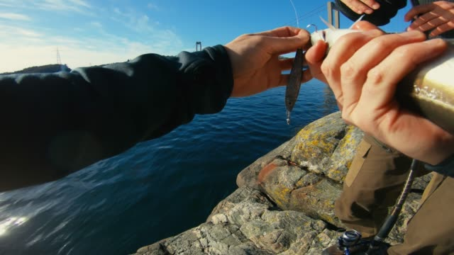 pov man fishing in the sea: releasing a fish - releasing stock videos & royalty-free footage