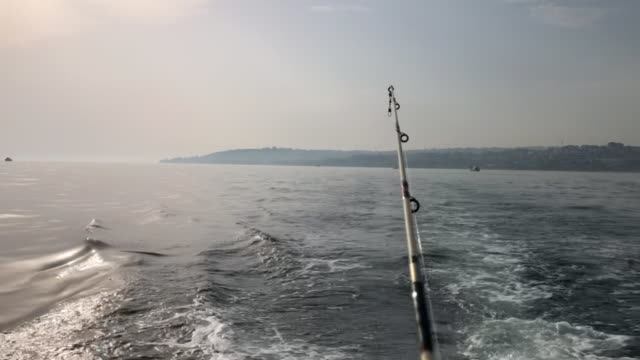 man fishing in the sea - fishing reel stock videos and b-roll footage