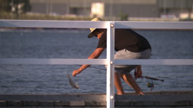 man fishing off a jetty on the swan river zoom in he catches a fish see fish jumping on jetty man pulls out hook and throws fish back perth city in... - jetty stock videos & royalty-free footage