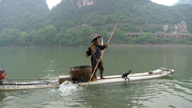 ms man fishing with birds / close to li river, guangxi, china - li river stock videos & royalty-free footage