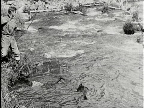1926 b/w, ms, man fishing with bow and arrow, catching fish in stream, alaska, usa - 25 29歳点の映像素材/bロール