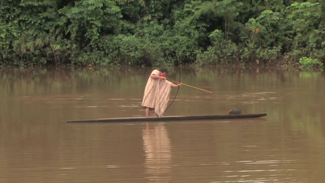 ws man fishing with bow and arrow/ manu national park, peru - nativo d'america video stock e b–roll