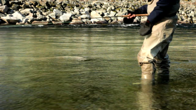 MS Man fly fishing in Cheakamus river, low section, Squamish, British Columbia, Canada