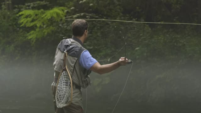 man fly fishing in vermont - angeln stock-videos und b-roll-filmmaterial