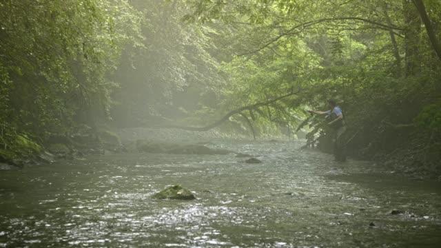 vídeos de stock, filmes e b-roll de homem fly fishing em vermont - outdoor pursuit