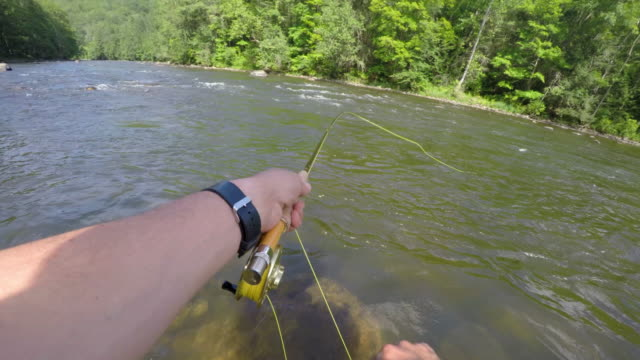 man fly fishing in vermont - fishing reel stock videos and b-roll footage