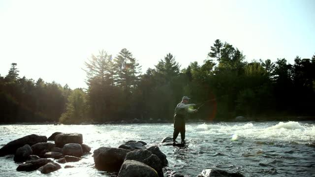 vídeos de stock e filmes b-roll de ws pan man fly-fishing at middle dam on richardson lake / south arm, maine, usa - só homens maduros