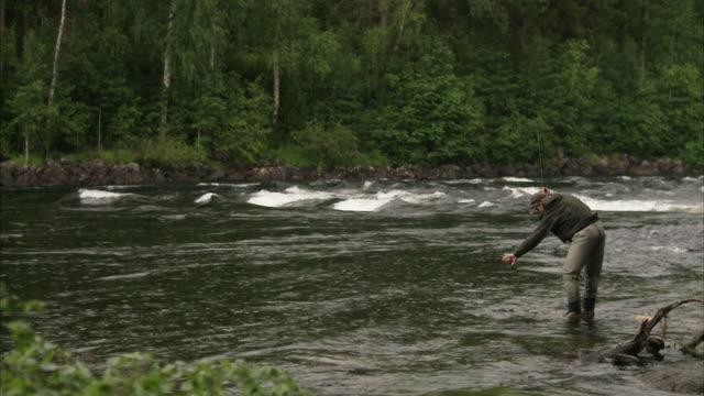 vídeos de stock e filmes b-roll de a man fly-fishing in a river vindalsalven sweden. - captura de peixe