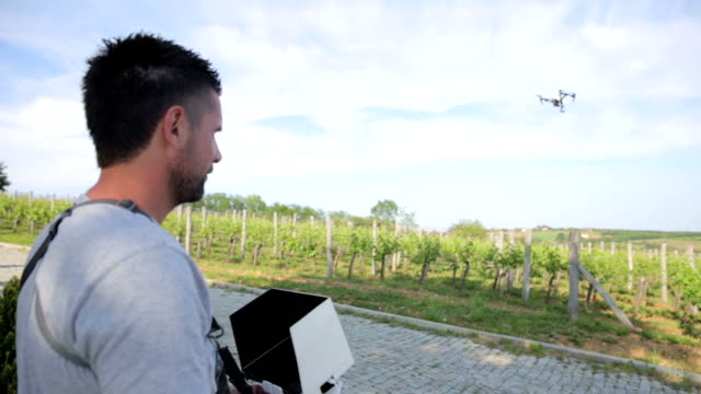 man flying a drone over vineyard - piloting stock videos and b-roll footage