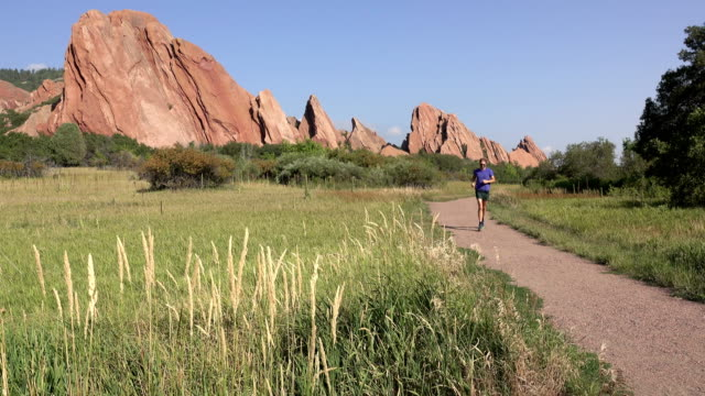 man fountain trail running roxborough state park path red rocks colorado rocky mountains - running shorts stock videos & royalty-free footage
