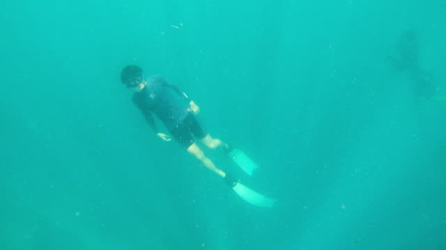 man free diving and returning to the sea surface - free diving stock videos & royalty-free footage