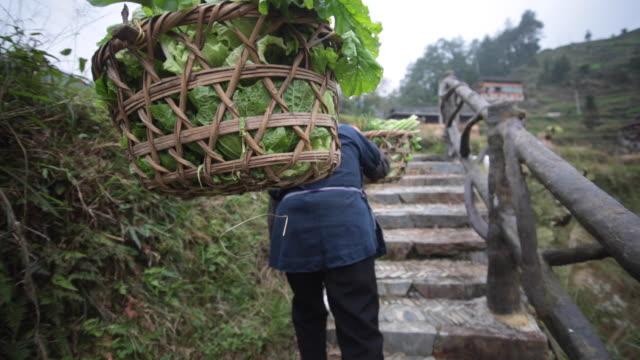 man from langde miao village, guizhou, china - korb stock-videos und b-roll-filmmaterial