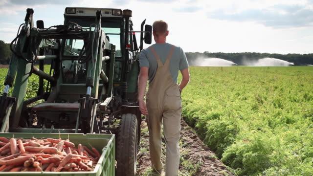 ws man getting into tractor on organic farm / brodowin, brandenburg, germany - organic farm stock videos & royalty-free footage
