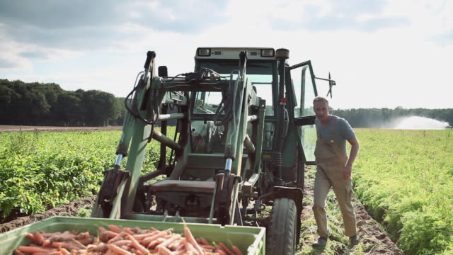 MS Man getting out of tractor on organic farm and walking to meet woman carrying crate of carrots / Brodowin, Brandenburg, Germany