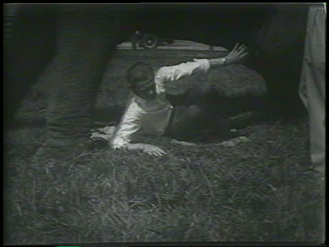 b/w 1954 man getting up from underneath elephant / newsreel - 1954 stock videos & royalty-free footage