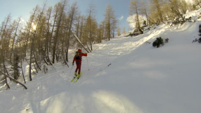 a man goes cross-country skiing. - ski jacket stock videos & royalty-free footage
