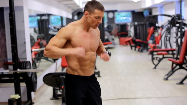 man goes through gym and prepares for training - male animal stock videos & royalty-free footage