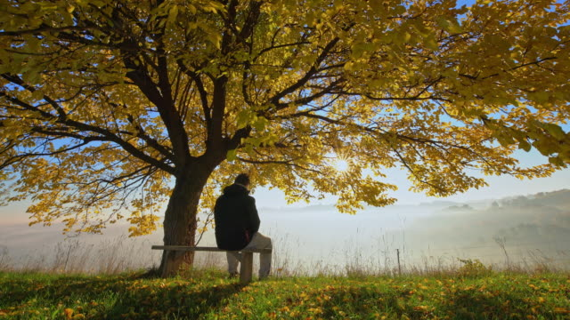 Man going to sit on a bench under the tree
