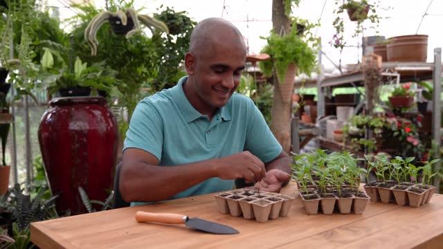vídeos y material grabado en eventos de stock de plantas de cultivo por el hombre en envases biodegradables - un solo hombre maduro