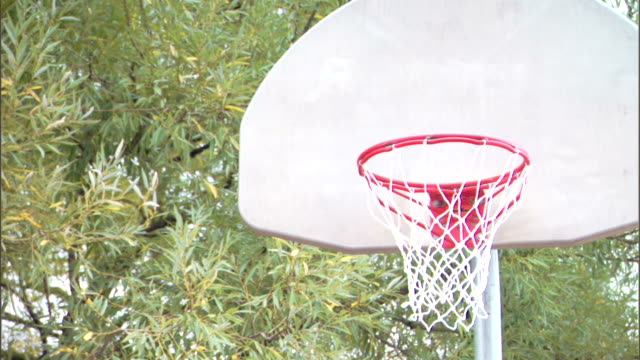 man guarding basketball hoop - see other clips from this shoot 1281 stock videos and b-roll footage