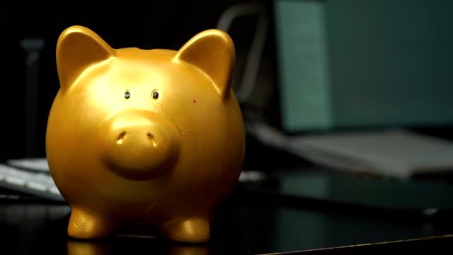 man hand saving coin on gold piggy - piggy bank stock videos & royalty-free footage