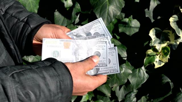 Man hands counting money, US dollars (USD) bills