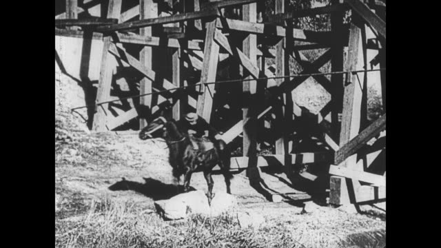 1921 man (buster keaton) hangs from a wire and lowers himself onto a horse - hanging stock videos & royalty-free footage