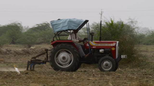 man harrows field with tractor, india. - adults only videos stock videos & royalty-free footage