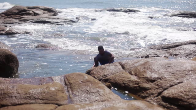 man harvesting mussels - one mid adult man only stock videos & royalty-free footage