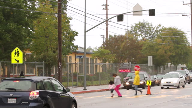 vídeos de stock e filmes b-roll de  ws man helping people for crossing road with red stop sign / los angeles, california, united states - quatro pessoas