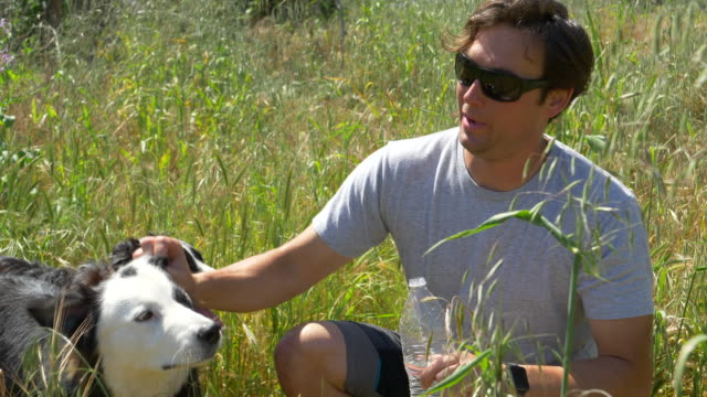 a man helps his dog drink water after running on a trail. - slow motion - palos verdes stock videos & royalty-free footage