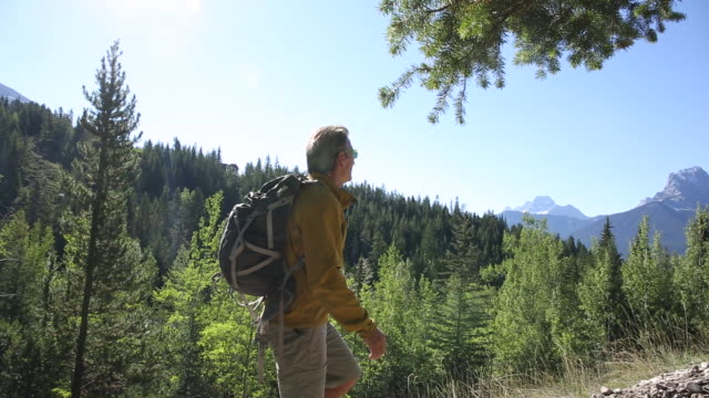 man hikes up mountain ridge, through forest - only mature men stock videos and b-roll footage