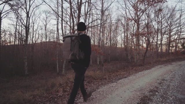 Man hiking and exploring forest area at sunset