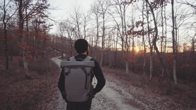 man hiking and exploring forest area at sunset - trail ride stock videos and b-roll footage